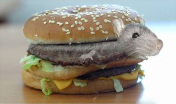 mouse_hamburger