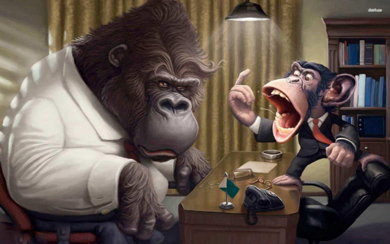 Monkey Business Evil Speculator