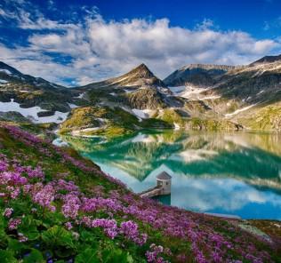 spring_landscape