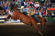"""Riders participate in the 74th """"That Famous Preston Night"""" Rodeo in Preston Idaho, August 1, 2009. The annual event is billed as one of the region's biggest rodeos, bringing top riders and thousands of fans to the small southern Idaho town. Photo by Colin E. Braley"""