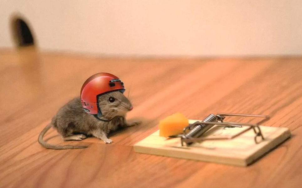 mouse_trap_helmet